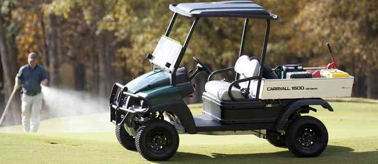 2WD golf turf utility vehicle