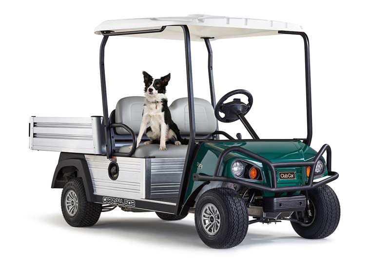 Golf course utility vehicle 502 full length with dog